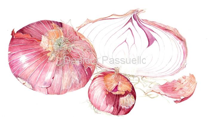 Cipolle di Breme.jpg